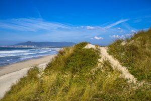stefano-majno-portugal-viana-do-castelo-el-camino-dunes.jpg