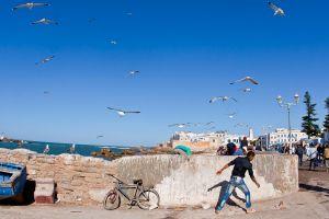 stefano-majno-morocco-crossing-essaouira-port-seagulls-bike.jpg