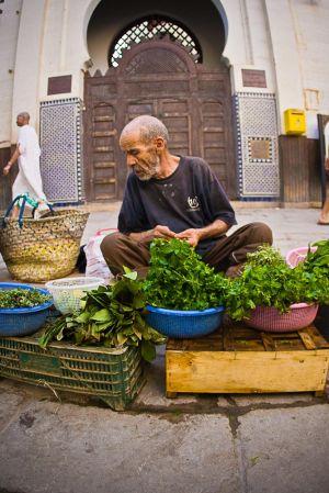 stefano-majno-morocco-crossing-fez-seller.jpg