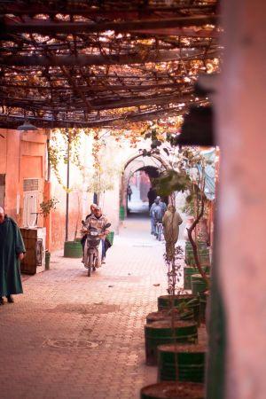 stefano-majno-morocco-crossing-marrakech-souk.jpg