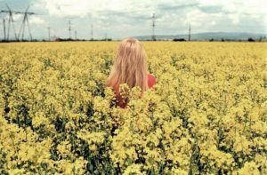 stefano majno yellow girl analogue dreams