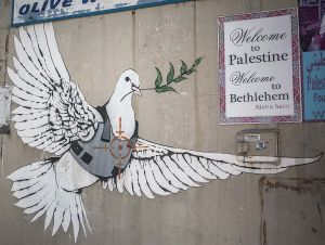 stefano majno israel west bank wall banksy graffiti dove bullet proof palestine.jpg.jpg